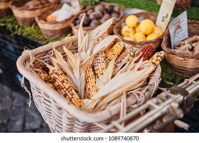 Rome, closeup of cobs on wicker basket and bicycle in traditional outdoor food market of Campo de Fiori (fields of flower)
