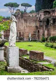 Rome, Italy - 05/01/2010 - Rome, Italy - Roman Forum-Vestal Virgins