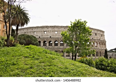 Rome, Italy. 05/03/2019. The colosseum with a green lawn on the hill of Colle Oppio. In the foreground some trees.