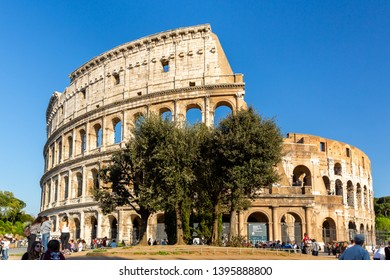 ROME, ITALY - APRIL 20, 2015: Low angle front view of people and a big tree in front of the Colosseum in Rome Italy April 20, 2015.