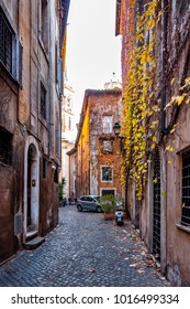 Rome, Italy - Dec 25, 2017 - Yellow leaves on the ancient building on the narrow street in the central part of Rome