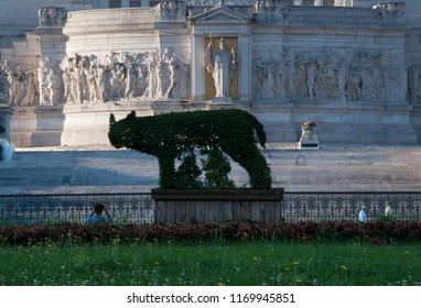 Rome, Italy - July 13 2018: The Capitoline Wolf (Lupa Capitolina) symbol of Rome made of privet plants in the foreground on Piazza Venezia and the Altar of the Fatherland in the background
