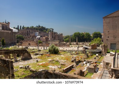 Rome , Italy / Lazio - 05/22/2011: view of Imperial holls ruins and people