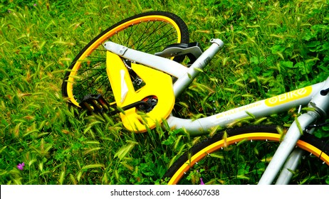 Rome, Italy - May 19, 2019: bike of the bike sharing company oBike damaged and abandoned in a field of grass with ears of wheat in the morning sun