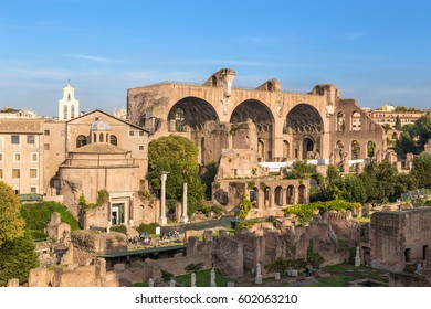ROME, ITALY - NOV 11, 2016: Ruins of the Roman Forum: Temple of Romulus, Basilica of Cosmas and Damian, Basilica of Maxentius