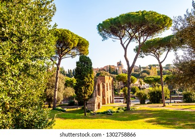 Rome, Italy - November 19, 2018: Scenic evergreen park with growing pines, velvet grass lawns and remains, ruins of the Aquaduct, aqueduct of Claudius at the Palatine hill