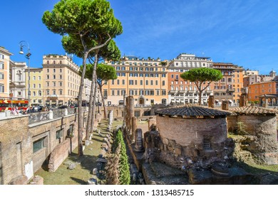 Rome, Italy - September 28 2018: The excavated underground ruins at Largo di Torre Argentina containing Roman temples and the remains of Pompey's Theatre, now a cat sanctuary.