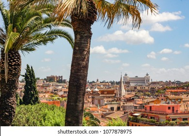 Rome, Lazio / Italy - July 10 2014: Worm sunny day over Rome's skyline with palm trees the foreground and Il Vittoriano in the distance