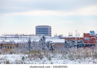 Rome Skyline: Palazzo della Civilta after snowfall (text trans.: a people of poets of artists of heroes of saints of thinkers of scientists of transmigrators navigators)