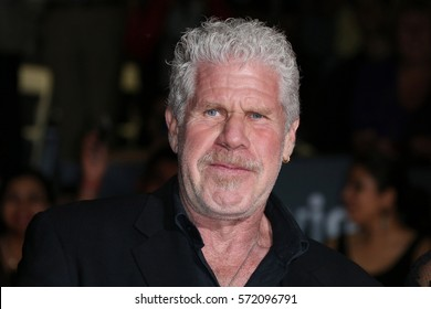 Ron Perlman attends the 2016 Toronto International Film Festival Premiere of 'All I See Is You' at the Princess of Wales Theatre on September 14, 2016 in Toronto, Canada.