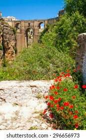 Ronda new bridge with field poppy in foreground (Andalusia, Spain)