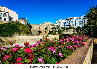 Ronda, Serrania de Ronda, Malaga, Andalusia, Spain, Iberian Peninsula