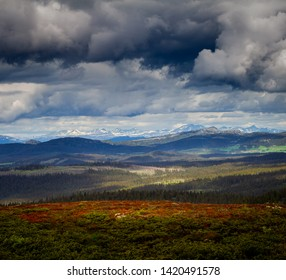 Rondane National Park in Oppland Norway