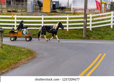 Ronks, PA, USA - December 12, 2018:  A small pony powered cart provides transportation in Lancaster County on a cold winter day.