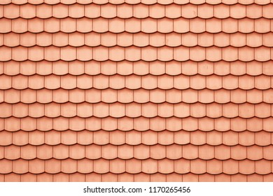 Roof with bright red tiles