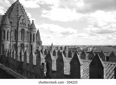 roof of cathedral in Salamanca, Spain