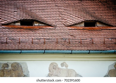 Roof with eyes-like dormers, Romania