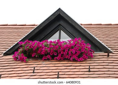 The roof and the flowers, Hungary