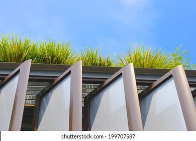 Roof garden on an office building