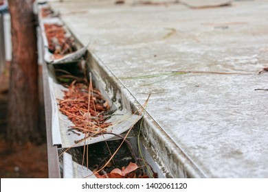 Roof gutter clogged with leaves, pine needles and other debris. Damaged plastic mesh gutter guard, leaf screen. Rain gutter inspection, cleaning and maintenance is required to prevent clogged gutters