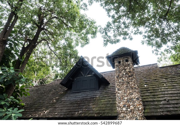 The roof of the house with big tree