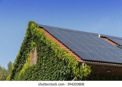 roof with ivy and solar cells