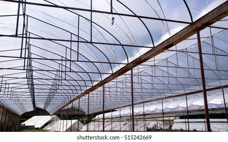 Roof  Plant nursery Farm for industry abstract background