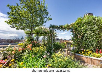 roof top garden with plants and flowers