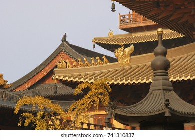 Roof top of Golden Buddhist Chinese style temple in Shanghai, China