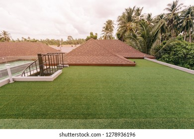 Roof top terrace in luxury villa. Summer, time outdoor, place for yoga, palm trees