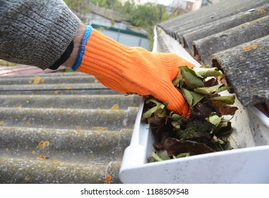 Roofer cleaning with hand  roof gutter from fallen leaves and dirt in fall.