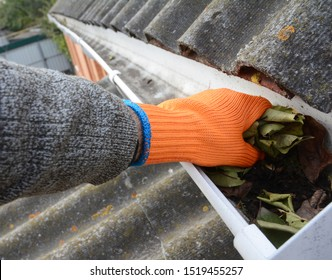 Roofer Cleaning Rain Gutter from Leaves. Roof Gutter Cleaning. House Gutter Cleaning.