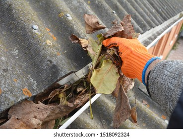 Roofer Hand Cleaning Rain Gutter from Leaves in Autumn. Roof Gutter Cleaning from Fallen Leaves. House Gutter Cleaning.