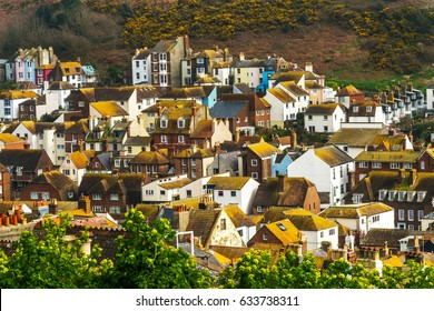 Roofs of buildings covered with green moss, seaside spot seen from the bird's eye view, beautiful typical English architecture, top view