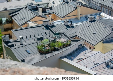 Rooftop garden . Green oasis on the top of the roof in Salzburg.