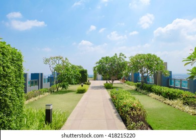 Rooftop garden. Outdoor garden on rooftop, soft focus. Environmental friendly and eco-friendly concept.