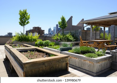 Rooftop garden with raised beds