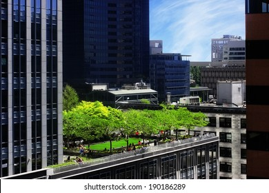 Rooftop park in the city