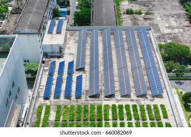 Rooftop solar and green on building in city