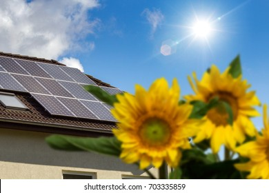 rooftop with solar panels and sunflowers in the garden