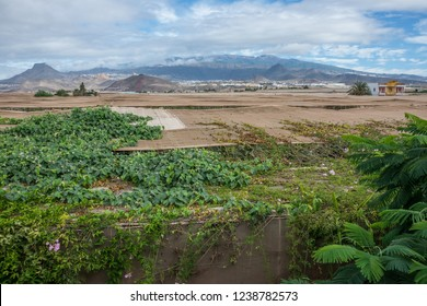 Rooftops of an ecological plantation in the south of Tenerife, Canary Islands