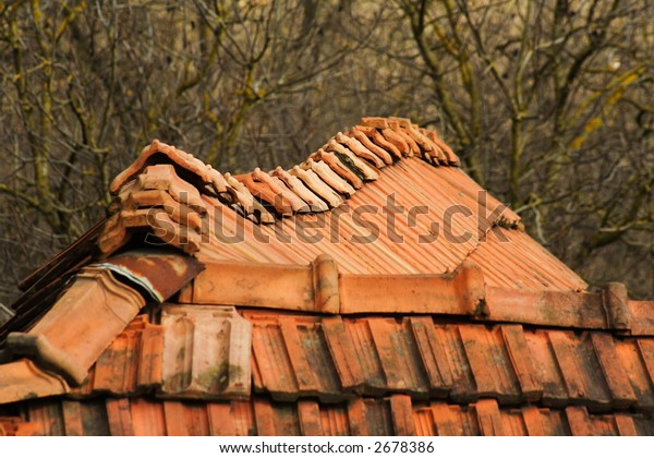Rooftops in a village
