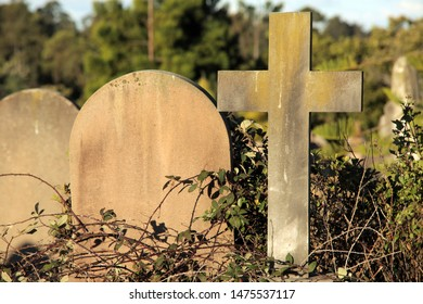 Rookwood, NSW Australia - August 11, 2019 - gravestones at Sydney's largest and oldest working cemetery - a close-up of a cross and a blank headstone surrounded by overgrown vines