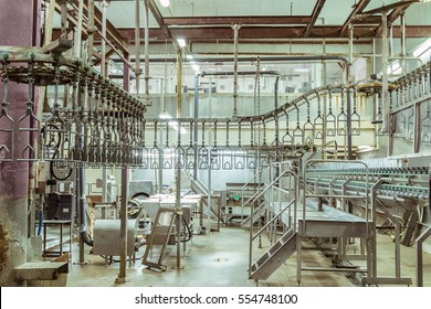Room for butchering slaughterhouse poultry factory. Poultry processing plant line. Production of chicken meat.