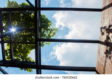 The room with the ceiling is a mirror overlooking the sky and trees, and light of the sun.