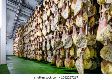 room cooled for healing and drying of hams from Iberian pigs