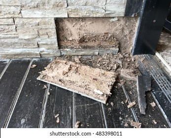 room that termite damage