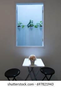 Room without lighting inside but bright from blue window frame and plant pot outside