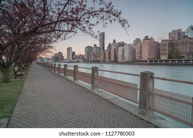Roosevelt island pier at sunrise