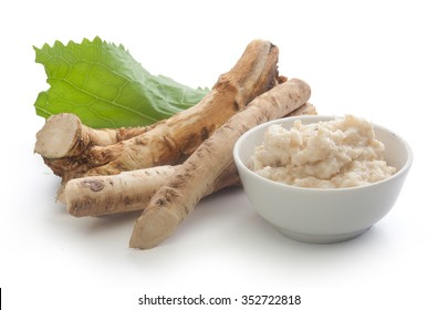 Roots of horseradish with grated horseradish in bowl and green leaf